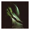 Fairies Waterfall 2