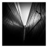 Walls Of Steel
