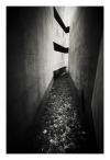 Torn walls