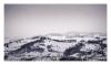 Winterlands 2