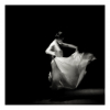 The Dance of the Sugar Plum Fairy